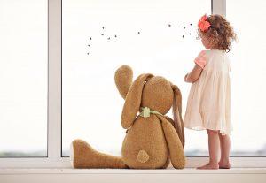 teddy at window
